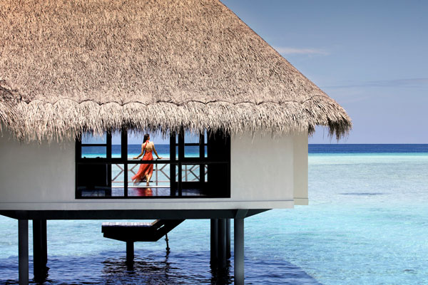 Крыша из пальмы – это экотренд в строительстве!